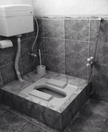 squat toilet with bidet shower